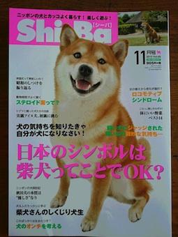 カレンダー&Shi-Ba 11月号発売中_b0011075_16321842.jpg