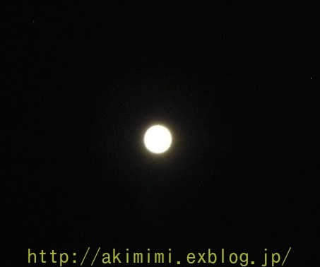 b0245488_04515051.jpg