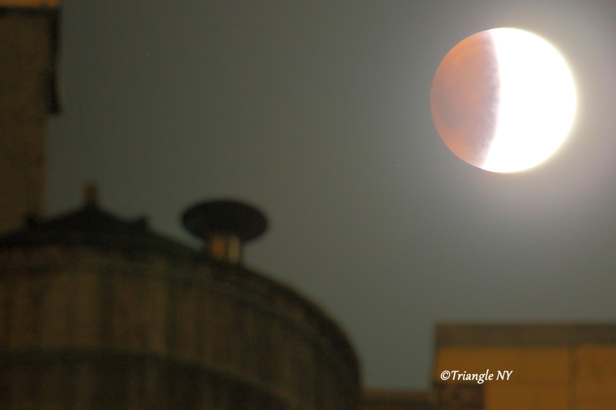 Super Blood Moon 2015 Ⅱ    ~~~記録~~~_a0274805_00112327.jpg