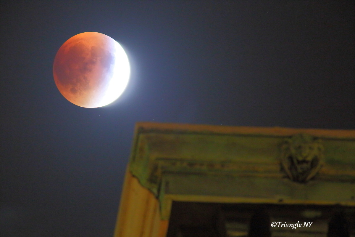 Super Blood Moon 2015 Ⅱ    ~~~記録~~~_a0274805_00114156.jpg