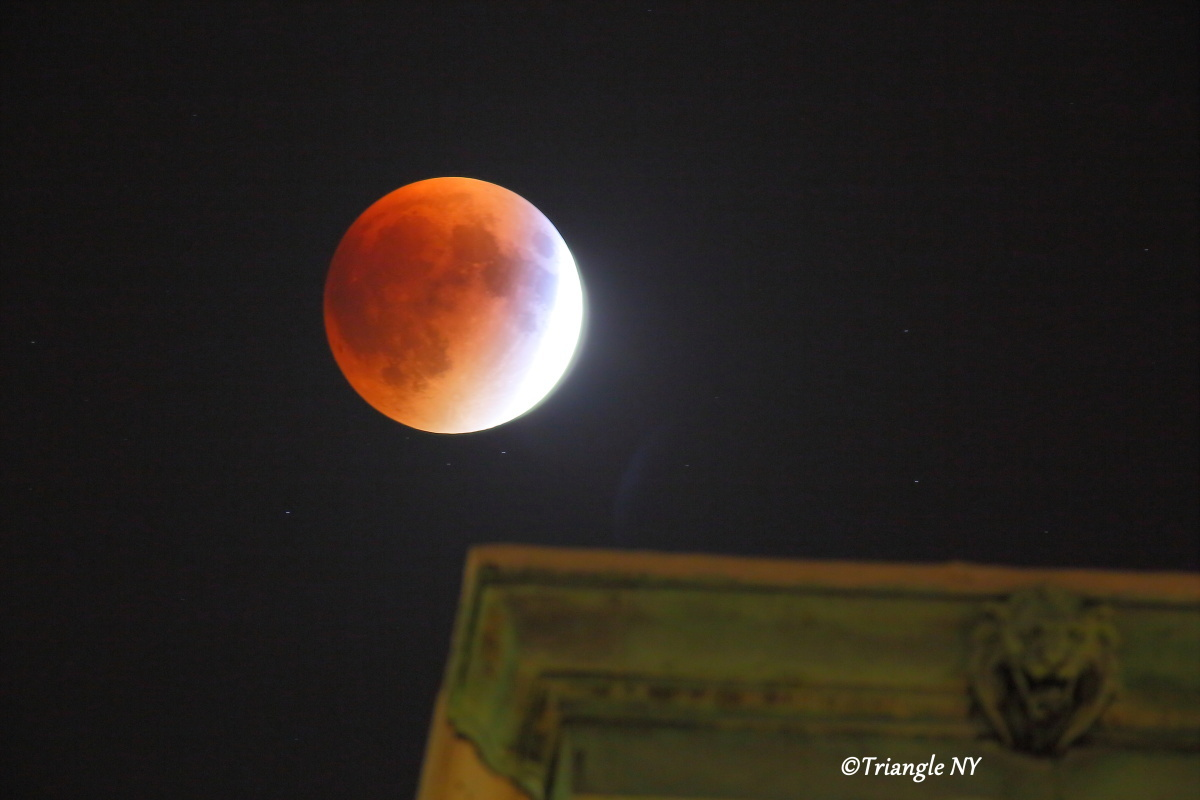 Super Blood Moon 2015 Ⅱ    ~~~記録~~~_a0274805_00115903.jpg
