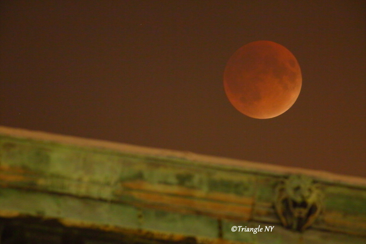 Super Blood Moon 2015 Ⅱ    ~~~記録~~~_a0274805_00122351.jpg