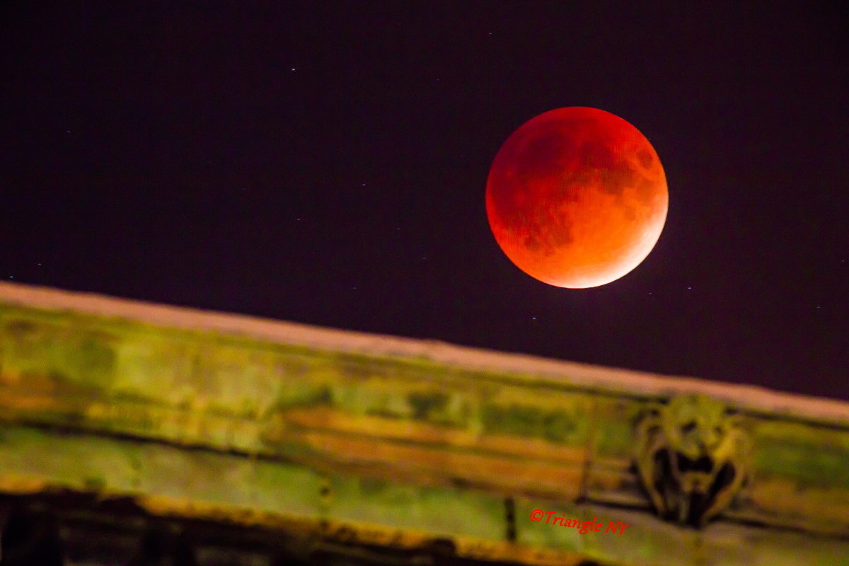 Super Blood Moon 2015 Ⅱ    ~~~記録~~~_a0274805_00131448.jpg