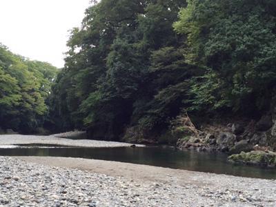 蕗のとう通信56  2015年10月1日(木)飯能河原スケッチ会_b0129807_1740439.jpg