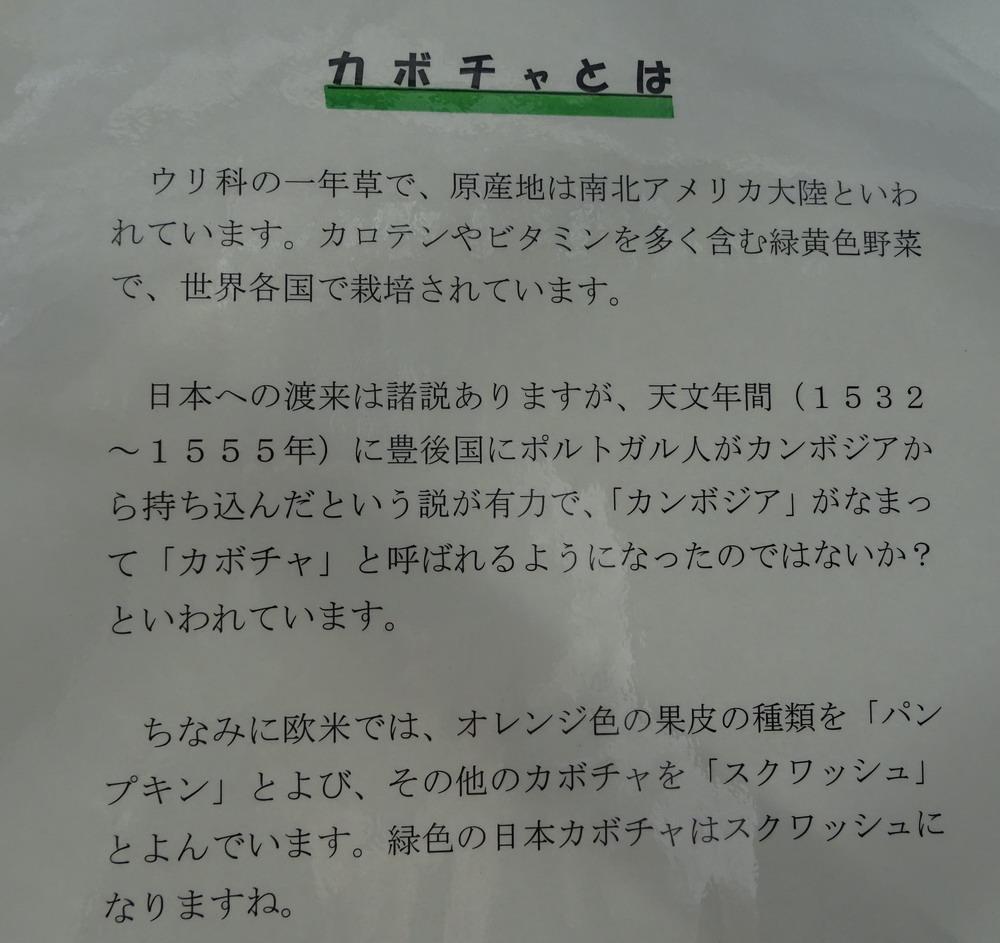 b0052108_9575339.jpg