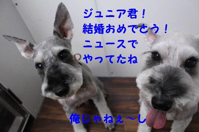 b0130018_1052326.jpg