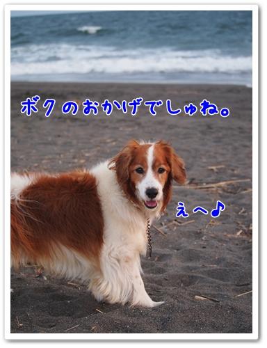 d0013149_0311637.jpg