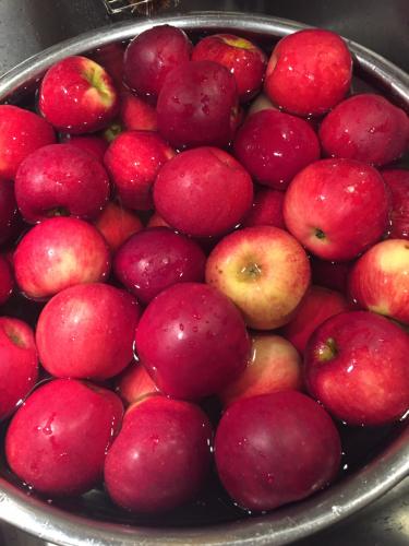 リンゴのシャーベット_b0232958_18005807.jpg