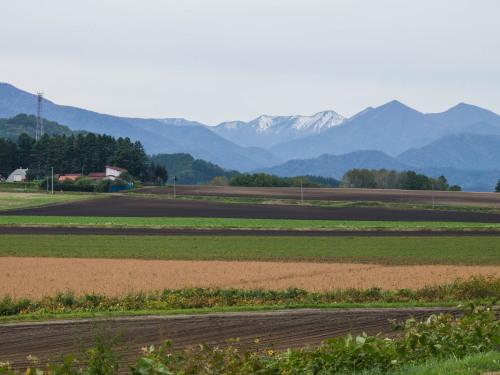 10月秋めいてきた農村風景とハロフィンの「紫竹ガーデン」_f0276498_15593019.jpg