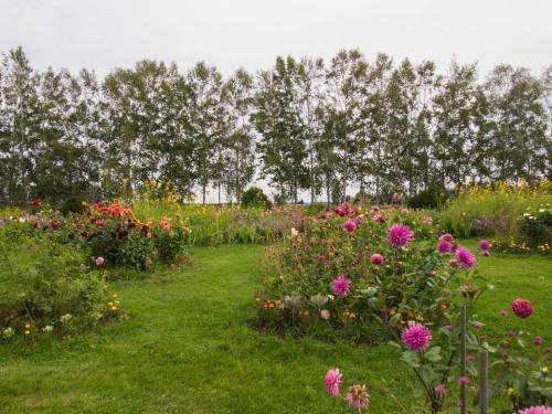 10月秋めいてきた農村風景とハロフィンの「紫竹ガーデン」_f0276498_16015932.jpg