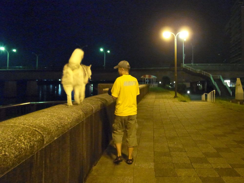ある日のおんぶ犬 (≧∇≦)_c0049299_2243138.jpg