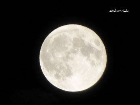 満月祭in七ヶ浜^^_f0240834_22431180.jpg