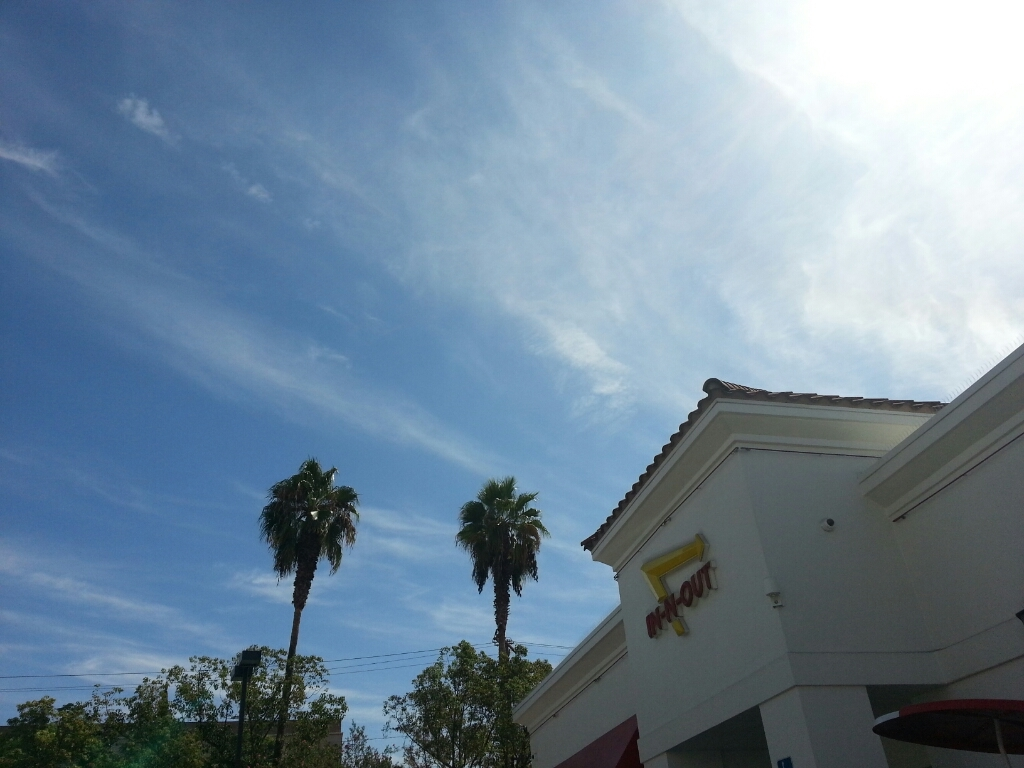 IN-N-OUTバーガー_a0105740_18290079.jpg