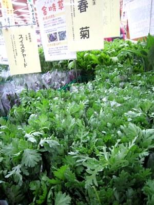 10月のおすすめ野菜_c0141652_18331170.jpg
