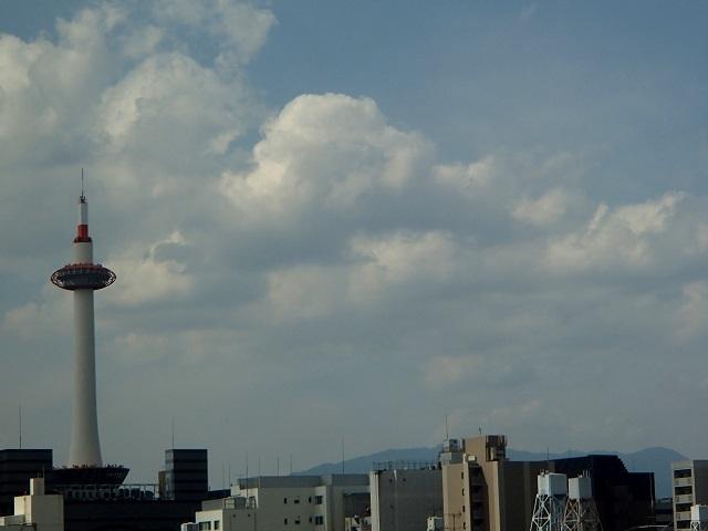 新幹線  (新大阪へ向う朝 編)_d0105967_19012430.jpg