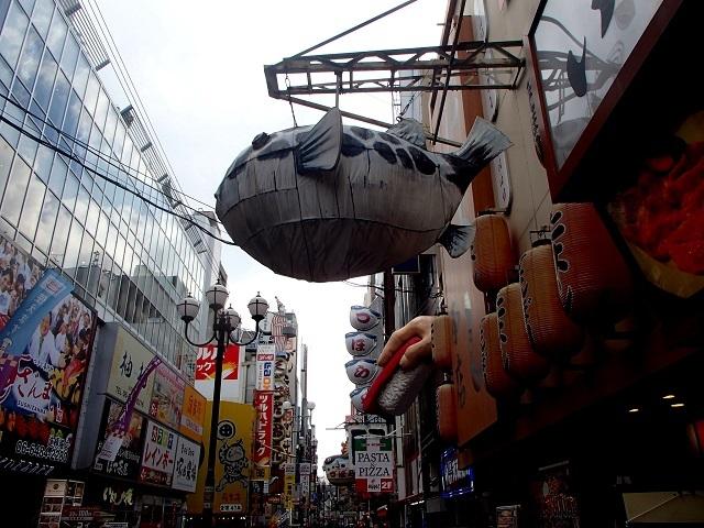 新幹線  (新大阪へ向う朝 編)_d0105967_19193157.jpg