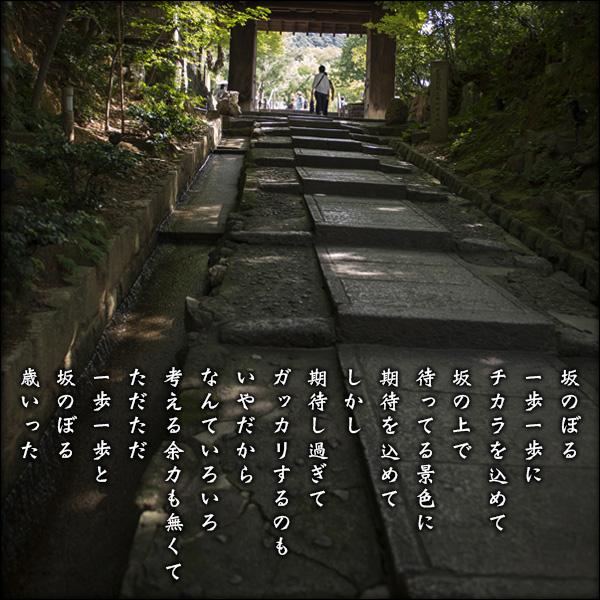 a0197968_18103061.jpg