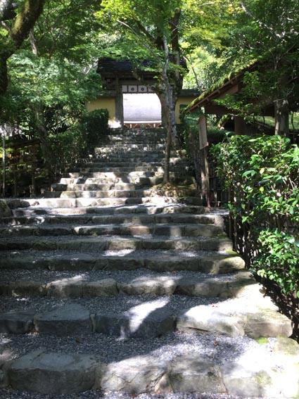 名古屋 大阪講座 終わり_f0176370_1359830.jpg