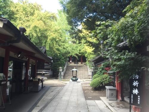 浮世絵展〜待乳山聖天〜_f0356588_16221201.jpeg