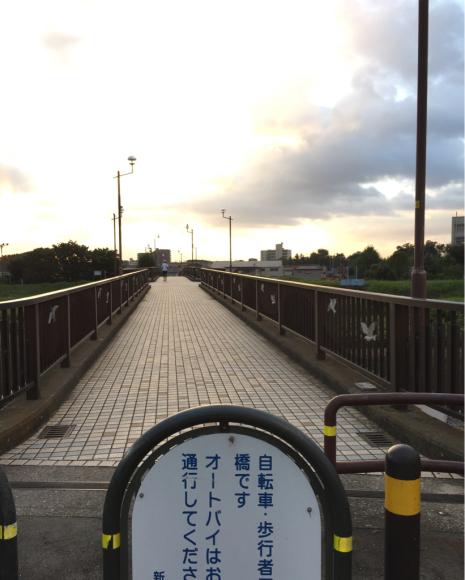 早朝ランニング (114) and 9月のランニング記録♪_b0203925_08535476.jpg