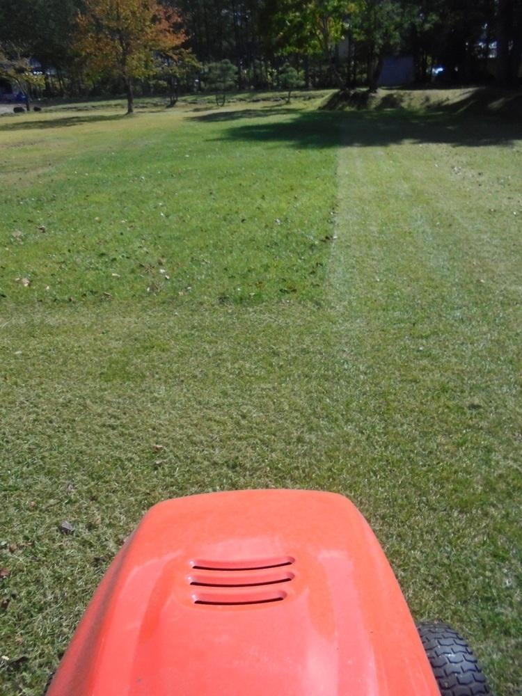 芝刈り_c0111229_18524432.jpg