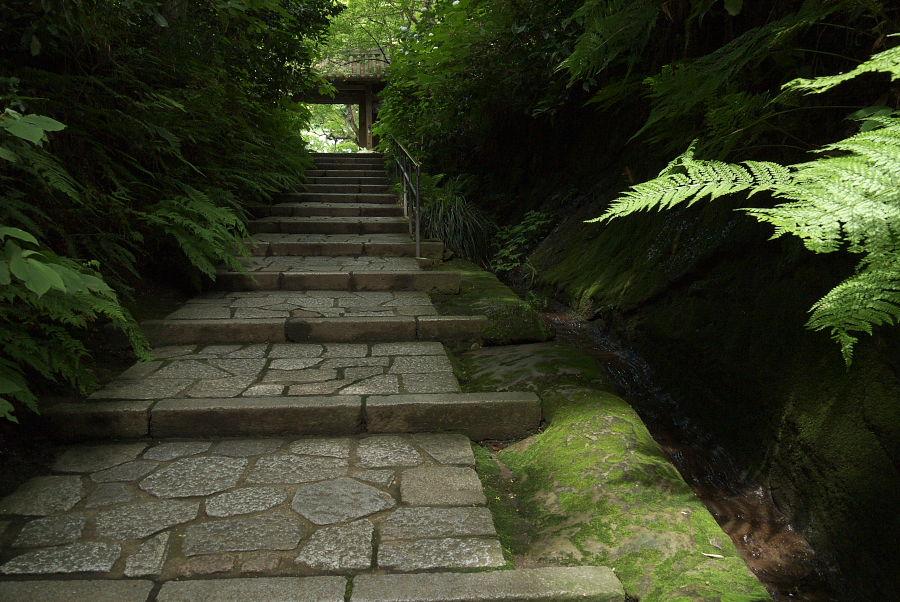 鎌倉 瑞泉寺_e0070236_11293049.jpg