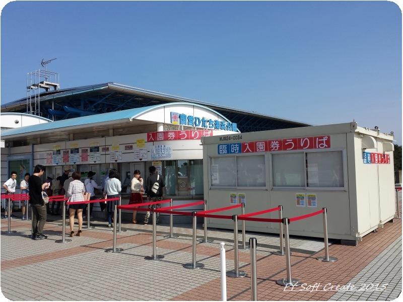◆ 世界遺産 日光、その6 「国営ひたち海浜公園」へ (2015年4月)_d0316868_8474424.jpg