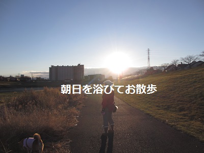 新年あけましたー_f0068501_111831100.jpg