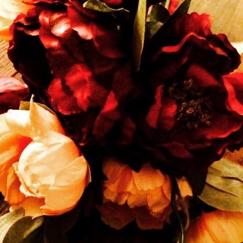 f0355107_20111116.jpg