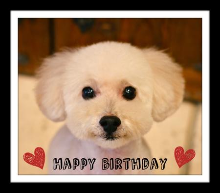 Happy Birthday♡りゅうくん_d0060413_184124.jpg