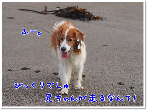 d0013149_019123.jpg