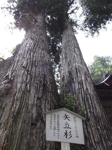 榛名神社_a0064067_01005413.jpg