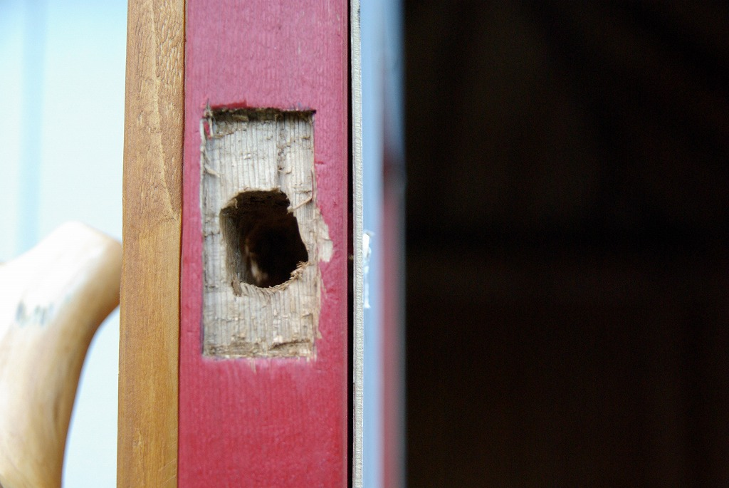 小屋作り・鍵穴と床の断熱材編_a0107184_295826.jpg