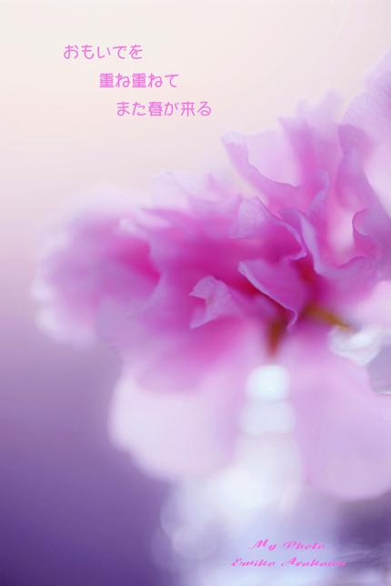 f0357923_23182015.jpg
