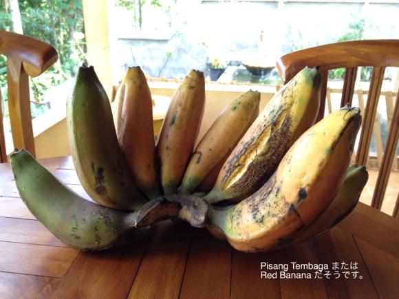 赤いバナナ ピサン・トゥンバガ_a0120328_15382887.jpg