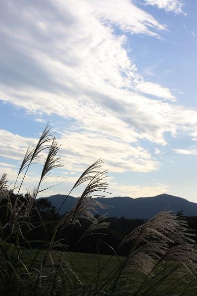 至福の貸別邸 欅庵で過ごす休日_e0211636_6132020.jpg