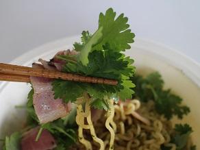 パクチー好きなのでベトナム麺パクチー祭をしました_c0030645_2040242.jpg