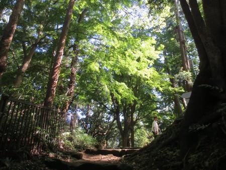 鷹取山を歩いて来ました〜_a0109467_0322090.jpg