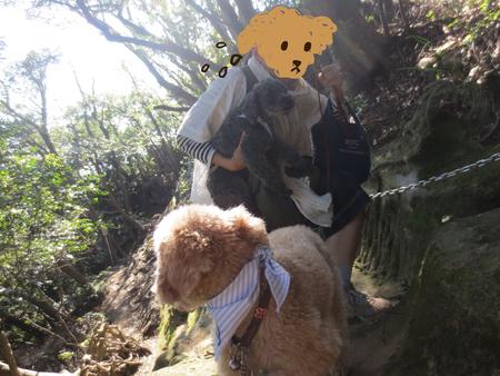 鷹取山を歩いて来ました〜_a0109467_0345028.jpg