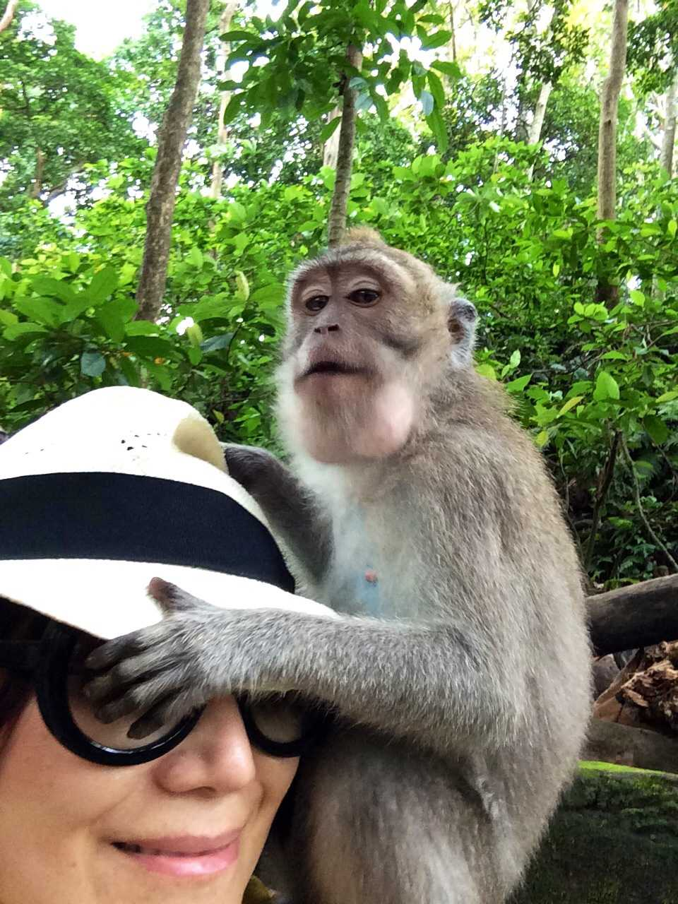 猿の泥棒さん☆_d0339884_17451943.jpg
