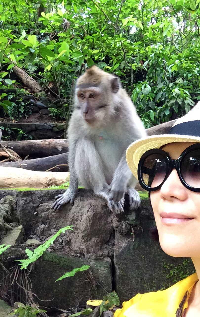 猿の泥棒さん☆_d0339884_17451983.jpg