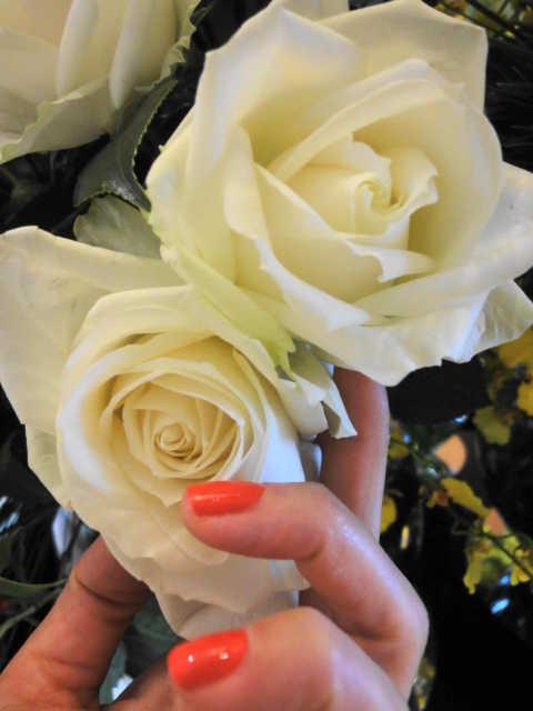 帰国後はパステルカラーの花☆_d0339884_17523027.jpg