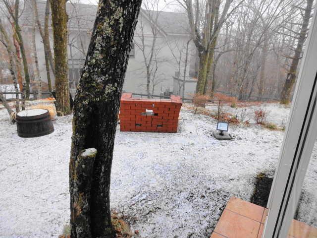 山中湖の初雪☆_d0339884_17524008.jpg