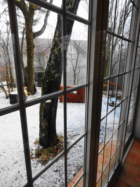 山中湖の初雪☆_d0339884_17524028.jpg
