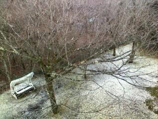 山中湖の初雪☆_d0339884_17524072.jpg