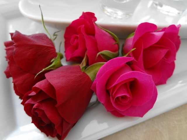 バラの花びら☆_d0339884_17542103.jpg