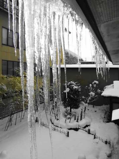 豪雪とツララ☆_d0339884_17543042.jpg