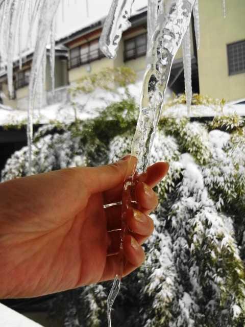 豪雪とツララ☆_d0339884_17543090.jpg