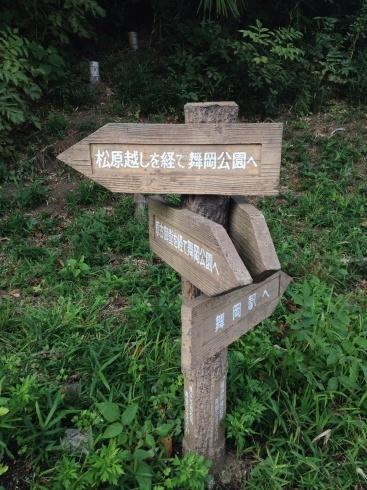 横浜の舞岡公園へ_d0122797_00014421.jpg