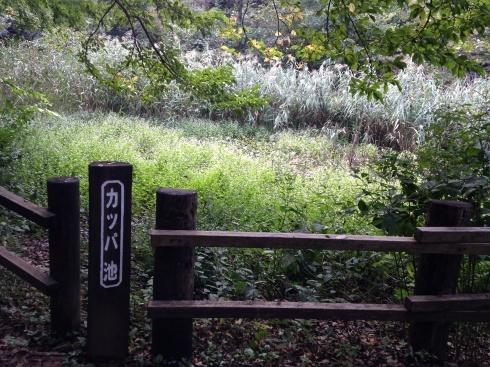 横浜の舞岡公園へ_d0122797_00023212.jpg
